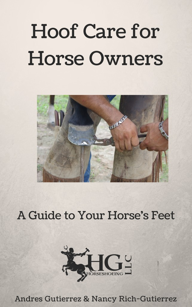 Equestrian Blog of the Day: Hoof Care For Horse Owners